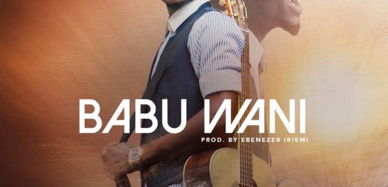 Music: Abel Namadi – Babu Wani